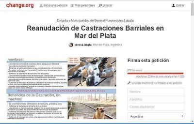 El reclamo por las castraciones de mascotas llegó a charge.org