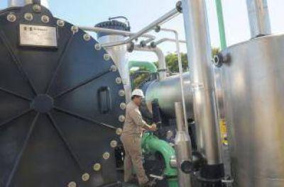 Cañeros plantean un nuevo reparto del cupo de etanol en la provincia