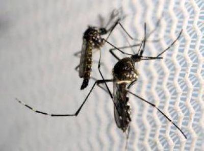 En Tucumán suman 16 los casos confirmados de dengue