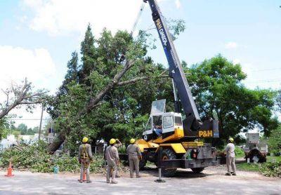 Enersa trabaja en varios frentes para reponer el servicio eléctrico dañado por la tormenta