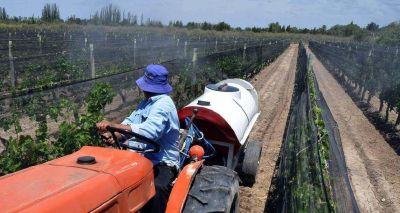 Agroquímicos suben hasta 200% en Mendoza