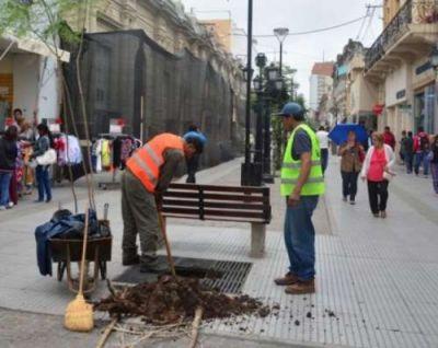 """""""Reverdece tu Ciudad"""": se reforestaron las peatonales salteñas con nuevos árboles"""