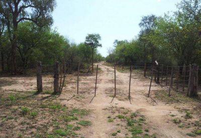 Se enteraron de la venta de terrenos por una denuncia de usurpación