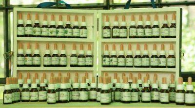 Crece en Salta el consumo de plantas medicinales