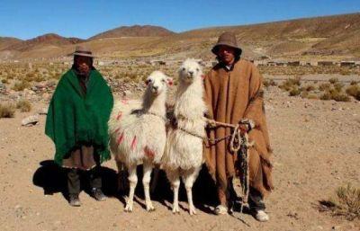 Salta: se lanzó el Fondo Ciudadano de Desarrollo Cultural 2016