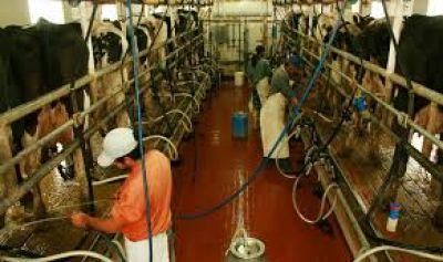 Diputados retoma un proyecto que prevé la creación de un registro de integrantes de la cadena láctea