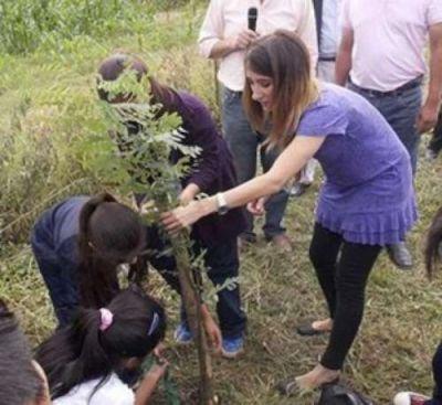 Avanza el Plan Provincial de Forestación en Salta