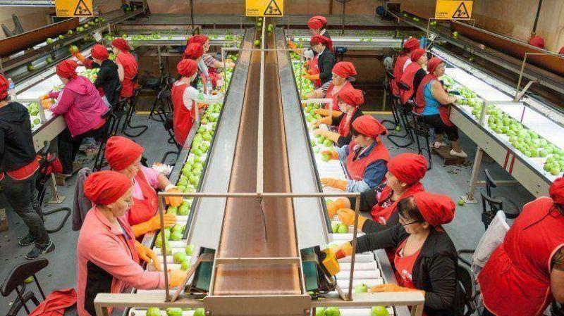 El gremio de la fruta define su pr�xima conducci�n