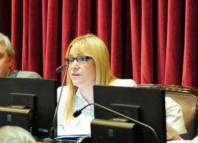 BOYADJIÁN PLANTEÓ LA IMPORTANCIA DE MALVINAS EN LA COMISIÓN DE RELACIONES EXTERIORES