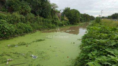Canal Oeste: agua estancada, basura y abandono