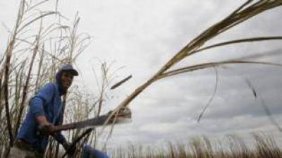 Las economías regionales muestran signos de mejoría
