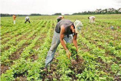 Solicitan agilizaci�n en el pago de subsidios para los peque�os productores