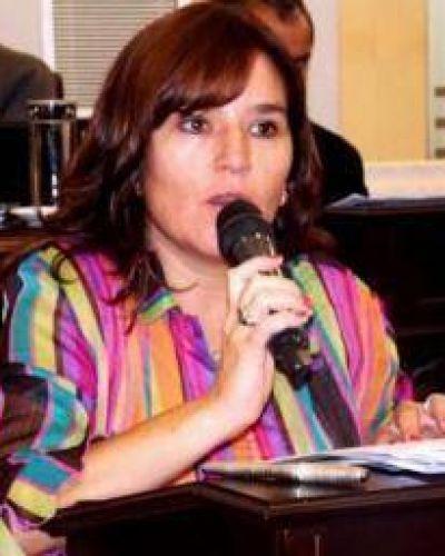Brizuela y Doria acusa al gobierno riojano por las boletas de luz