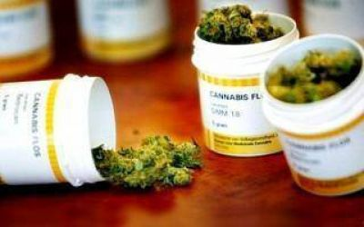 La Justicia orden� a IOMA cubrir un tratamiento con aceite de cannabis