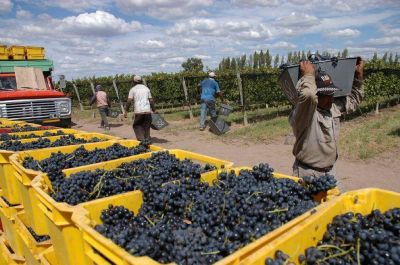 Trabajadores vitivin�colas acordar�an aumento del 30%