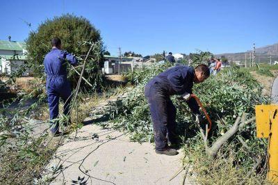 Realizan tareas de saneamiento en el arroyo Ñireco