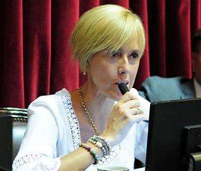García Larraburu propone por ley la Tarifa Social para la Patagonia