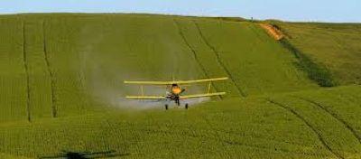 """Senadores coincidieron en que """"falta control del Estado"""" en el tema agroquímicos"""