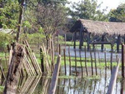 Proyecto Guaraní en Paraguay