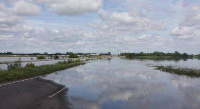 Adolfo Alsina: Calculan que m�s de 150 mil hect�reas quedaron bajo el agua