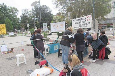 Contra el maltrato animal y a favor de una tenencia responsable de mascotas