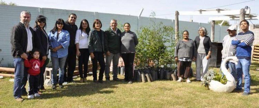 """Entregan árboles en el Programa """"Cuidado del Medio Ambiente"""""""