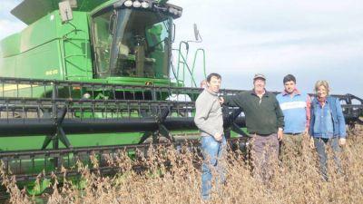 Para no penalizar, la soja pelea contra la humedad y el grano da�ado