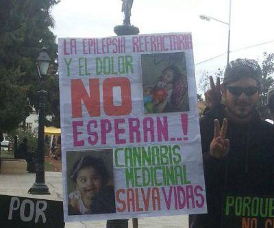 Por la marihuana legal, se movilizaron unas 70 personas en Salta