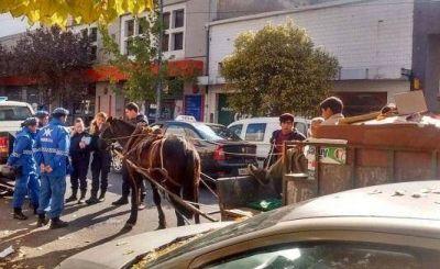 Basta de tracción a sangre: intentó defender a un caballo maltratado y la agredieron