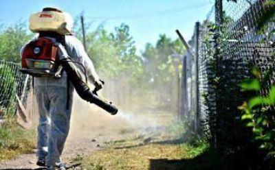 Informe especial: el dengue golpeó fuerte en el conurbano y desnudó la crisis sanitaria