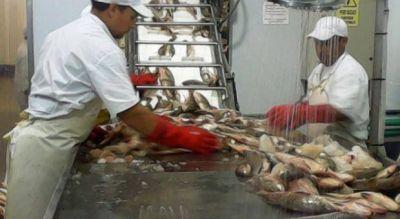 Frigoríficos pesqueros de Mar del Plata reclaman un dólar a 20 pesos
