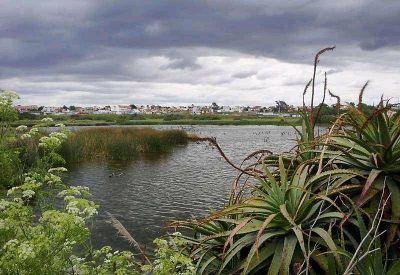 """Sin protección, la reserva del Puerto se encuentra """"abandonada"""""""