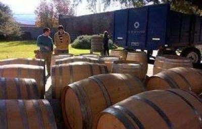 El Ministerio de Ambiente aspira a mejorar el posicionamiento de los vinos salteños