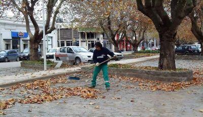 Polémica por la reducción del barrido de calles en Balcarce