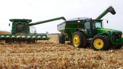 Entusiasma en el campo la reactivaci�n del trigo
