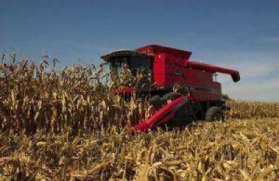 En Junín cierra una buena cosecha, pero no se reflejará en grandes inversiones