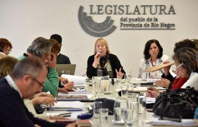 Analizan en Comisión reformas a la ley que regula la actividad farmacéutica
