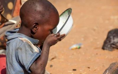 """La Santa Sede en la FAO: """"Un alimento perdido es un alimento robado a los pobres"""""""