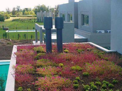 Techos verdes: promueven la construcción de estos espacios en Mar del Plata