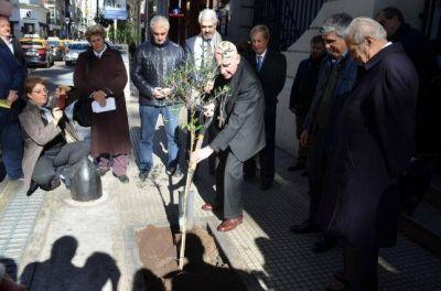 Se plant� un olivo por la paz en el ingreso a la Conferencia Episcopal