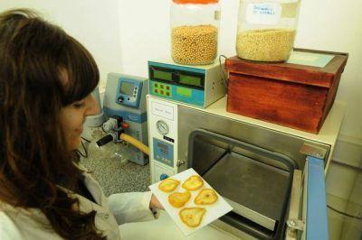 Crear�n una planta de alimentos a bajo costo en Agronom�a