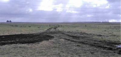 Las últimas lluvias complican el comienzo de la siembra de trigo en General Alvarado