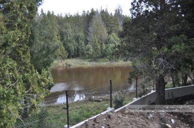 Proyectan crear un Consejo para proteger humedales