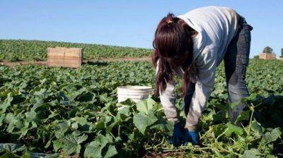 Trabajo infantil en Entre R�os: en 2015 se registraron 56 denuncias