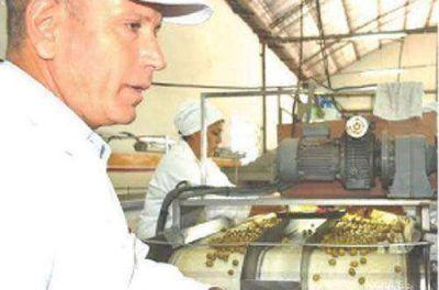 Ahora es Nación quien busca una tarifa especial para olivícolas