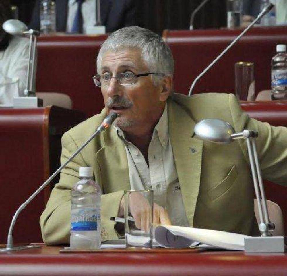 Empresa de Energía: la Legislatura ya discute sobre la presidencia de García