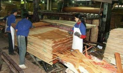 Desde el sector maderero sufren la apertura de importaciones y ven difícil una reactivación