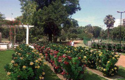 El parque Chacabuco recuperar� su rosedal por un acuerdo con la comunidad coreana