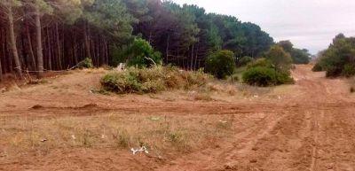 La policía evitó una nueva usurpación de terrenos