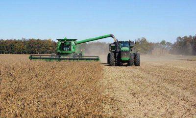 Cae la actividad industrial bonaerense y crece el modelo agroexportador